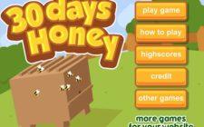 30day honey