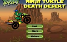 ninja turtle death desert