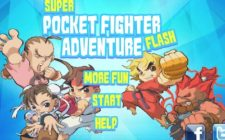 super pocket fighter