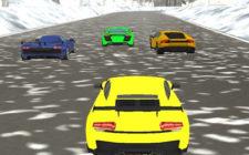 Snow Hill Racing